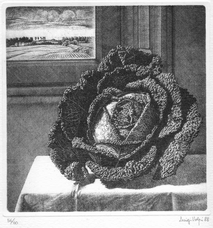 La verza, 20x19 cm, 1982/1986, acquaforte