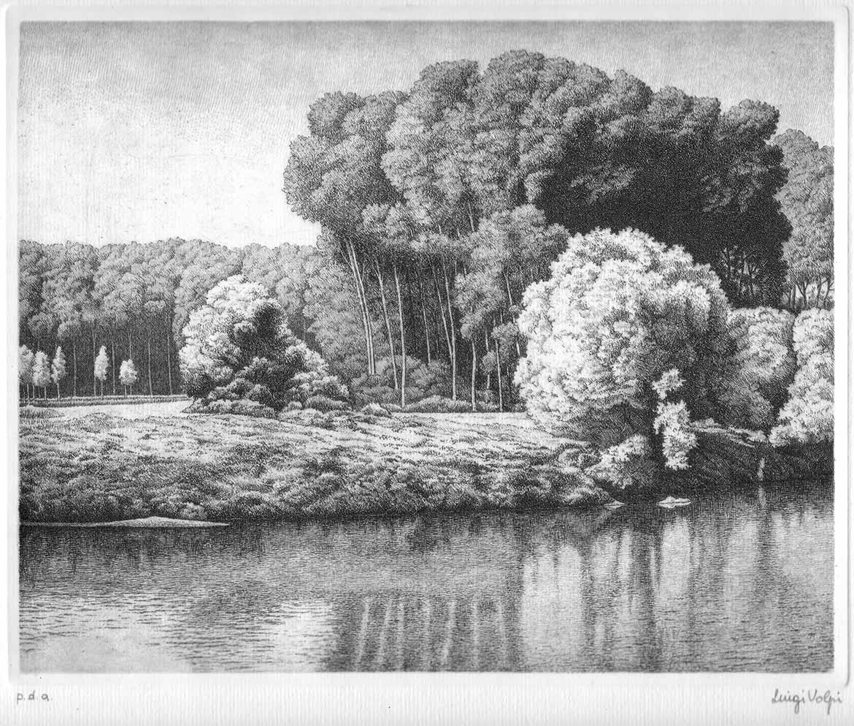 Bosco in riva al fiume - 20x25 cm - 1990 - acquaforte