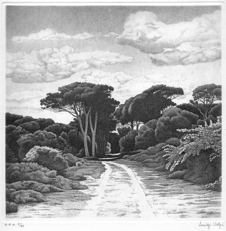 Sentiero a S. Rossore (Pisa) - 15x15 cm - 1993 - acquaforte