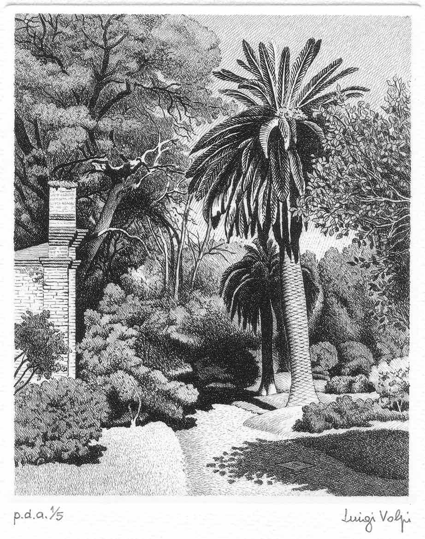 Nell'otro botanico (Il silenzio) - 16x13 cm - 2006 - acquaforte
