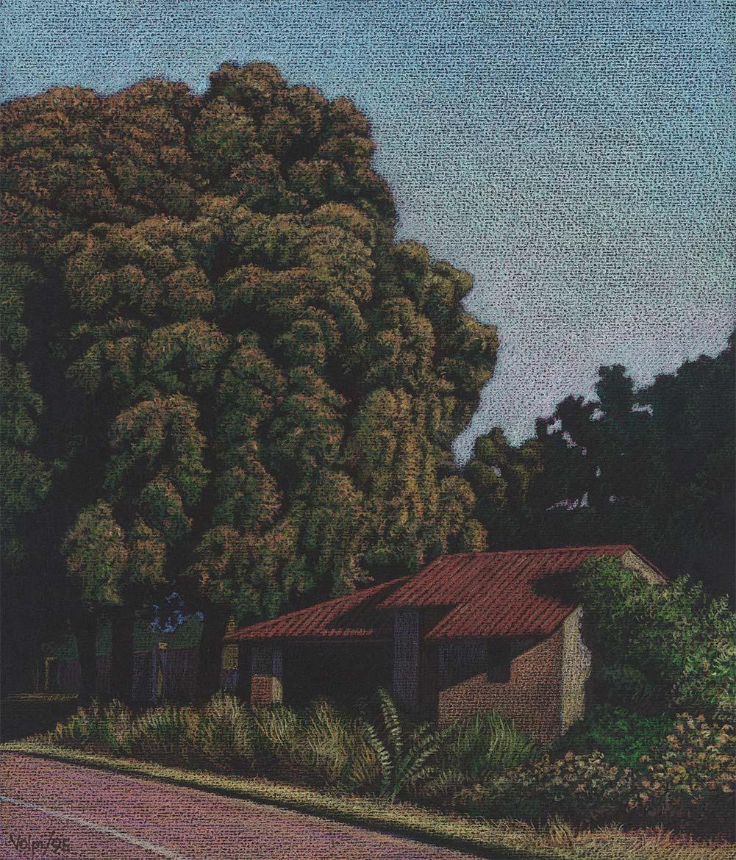 Grande albero - 23x19 cm - 1995 - Pastello su carta