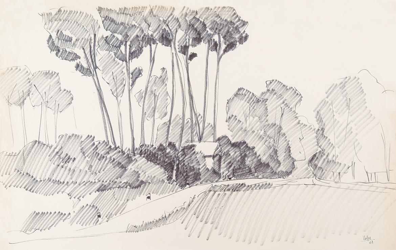 Paesaggio - 51x75 cm - 1961 - carboncino su carta