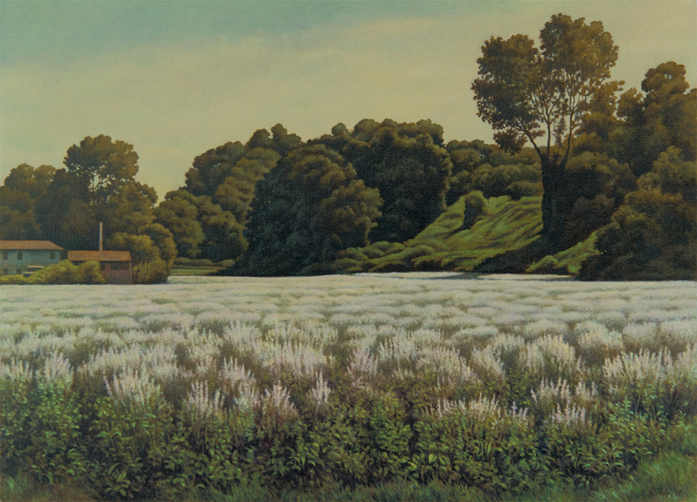 Prato in fiore - 40x50 cm - 1999 - olio su tela
