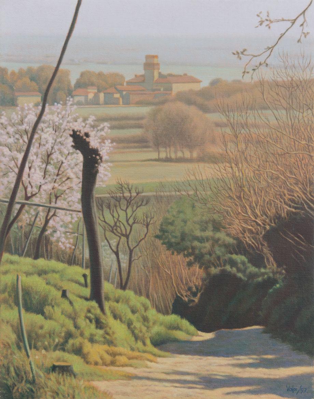 Primavera - 38x30 cm - 1997 - olio su tela